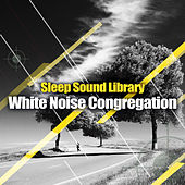 White Noise Congregation by Sleep Sound Library