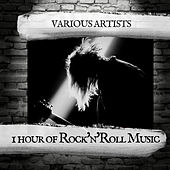 1 hour of Rock'n'Roll Music de Various Artists