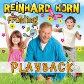 Frühling – Meine Jahreszeiten-Hits (Playback) von Reinhard Horn