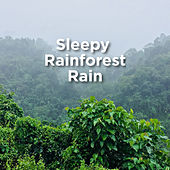 Sleepy Rainforest Rain by Rain Sounds