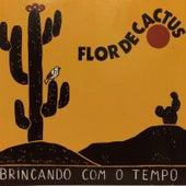 Brincando Com o Tempo de Flor de Cactus
