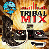 Tribal Mix by Various Artists