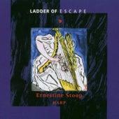 Ladder of Escape No. 9 by Ernestine Stoop