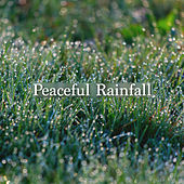 Peaceful Rainfall by Rain Sounds