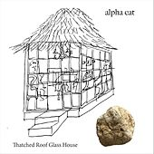 Thatched Roof Glass House by Alpha Cat