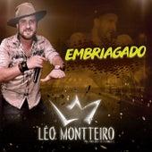 Embriagado: Pra Dançar e Se Apaixonar von Léo Montteiro