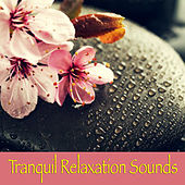 Tranquil Relaxation Sounds by Various Artists