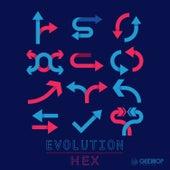 Evolution von Hex