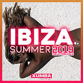 Ibiza Summer 2019 Collection, Vol. 6 - EP by Various Artists