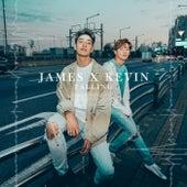 Falling van James Lee