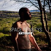 Space Monkeys by Antonio F
