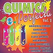 Química Perfecta, Vol. 1 von Various Artists