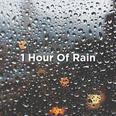 1 Hour Of Rain by Rain Sounds