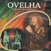Ovelha e Banda Oxente Music de Ovelha