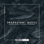 Ingredient Music, Vol. 20 by Various Artists
