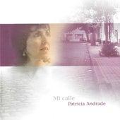 Mi calle by Patricia Andrade