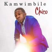 Kamwimbile von Chico