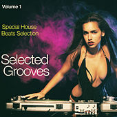Selected Grooves, Vol. 1: Special House Beats Selection van Various