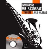 Sono Un Pirata ed Un Signore (Saxophone Cpver) de Mister Saxobeat