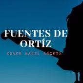Fuentes de Ortiz de Hazel Arzeta