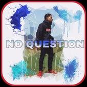 No Question by Thomas DaVinci