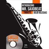 Momentos (Saxophone Cover) de Mister Saxobeat