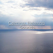 Calming, Relaxing Sounds by Rain Sounds