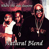 Where She Was Sleeping by NATURAL BLEND