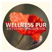 Wellness pur Entspannungsmusik von Entspannungsmusik Klavier Akademie