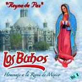 Homenaje a la Reyna de Mexico by Buhos
