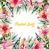Tropical Beats 2019: Chill Paradise, Summer Music 2019, Holiday Music & Relax, Modern Songs, Deep Relaxation de Deep House Lounge