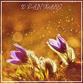 50 Rain Sounds by Various Artists