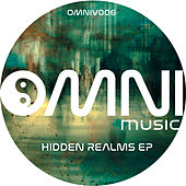 Hidden Realms - Single de Various Artists