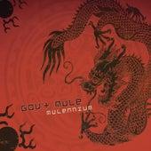 Mulennium de Gov't Mule