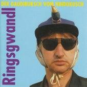 Der Gaudibursch vom Hindukusch by Georg Ringsgwandl