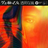 Toumeina Arashi by Gesu No Kiwami Otome