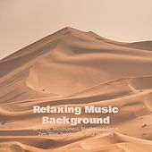 Relaxing Music Background: Serenity, Mindfulness, Meditation, Focus, Zen, Bliss, Spirituality, Soul Therapy de Various Artists