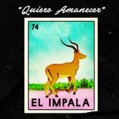 Quiero Amanecer by Impala
