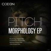 Morphology - Single by Pitch