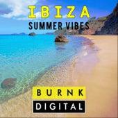 Ibiza Summer Vibes - EP de Various Artists