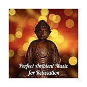 Perfect Ambient Music for Relaxation de Various Artists