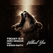 Without You by Freaky DJ's