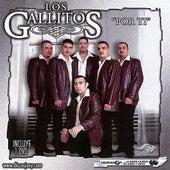 Por Ti by Los Gallitos
