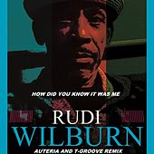 How Did You Know It Was Me? (Auteria & T-Groove Mix) de Rudi Wilburn