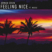 Feeling Nice von Arman Cekin