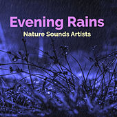 Evening Rains de Nature Sounds Artists