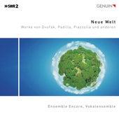 Neue Welt de Various Artists