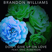 Don't Give Up On Love van Brandon Williams