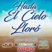 Hasta El Cielo Lloró de Various Artists