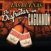 Las Buenas Pa´ Disfrutar  Un Caguamón de Various Artists